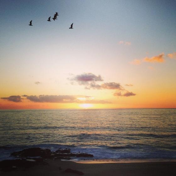 NookAndSea-Weekend-Recap-Instagram-Laguna-Beach-California-Sunset